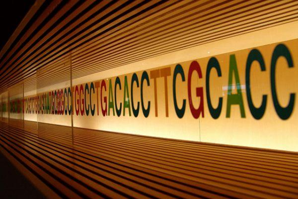 Nutrigenomics Part 2 – Genetics